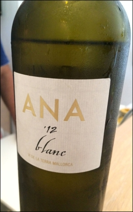 Ana Vins_7-18-15_#08c