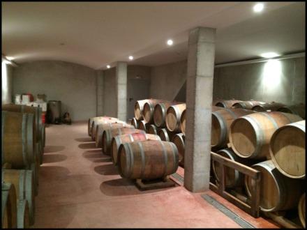 Ana Vins Barrels