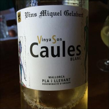 Vinyes Son Caules Blanc Wine