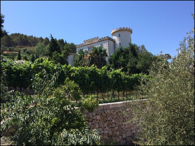 Castell Miquel_7-24-15_#2