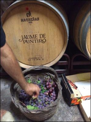 Jaume de Puntiró_7-24-15_#15
