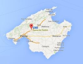 Jaume Puntiro Map.jpg