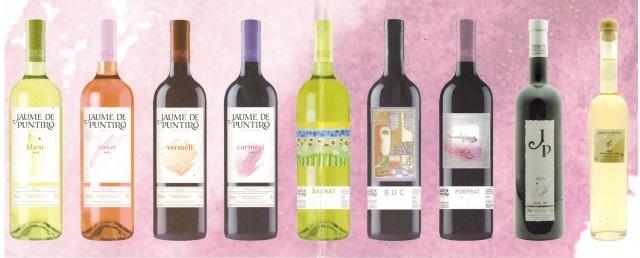 Jaume Puntiro Wine.jpg