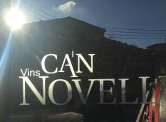 Vins Can Novell logo